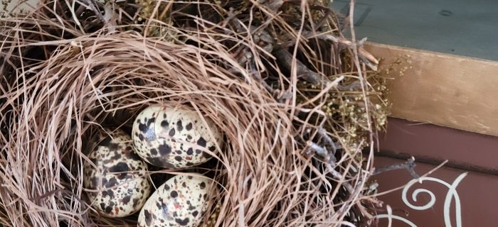 bird nest, decorating with nature, easy spring decor